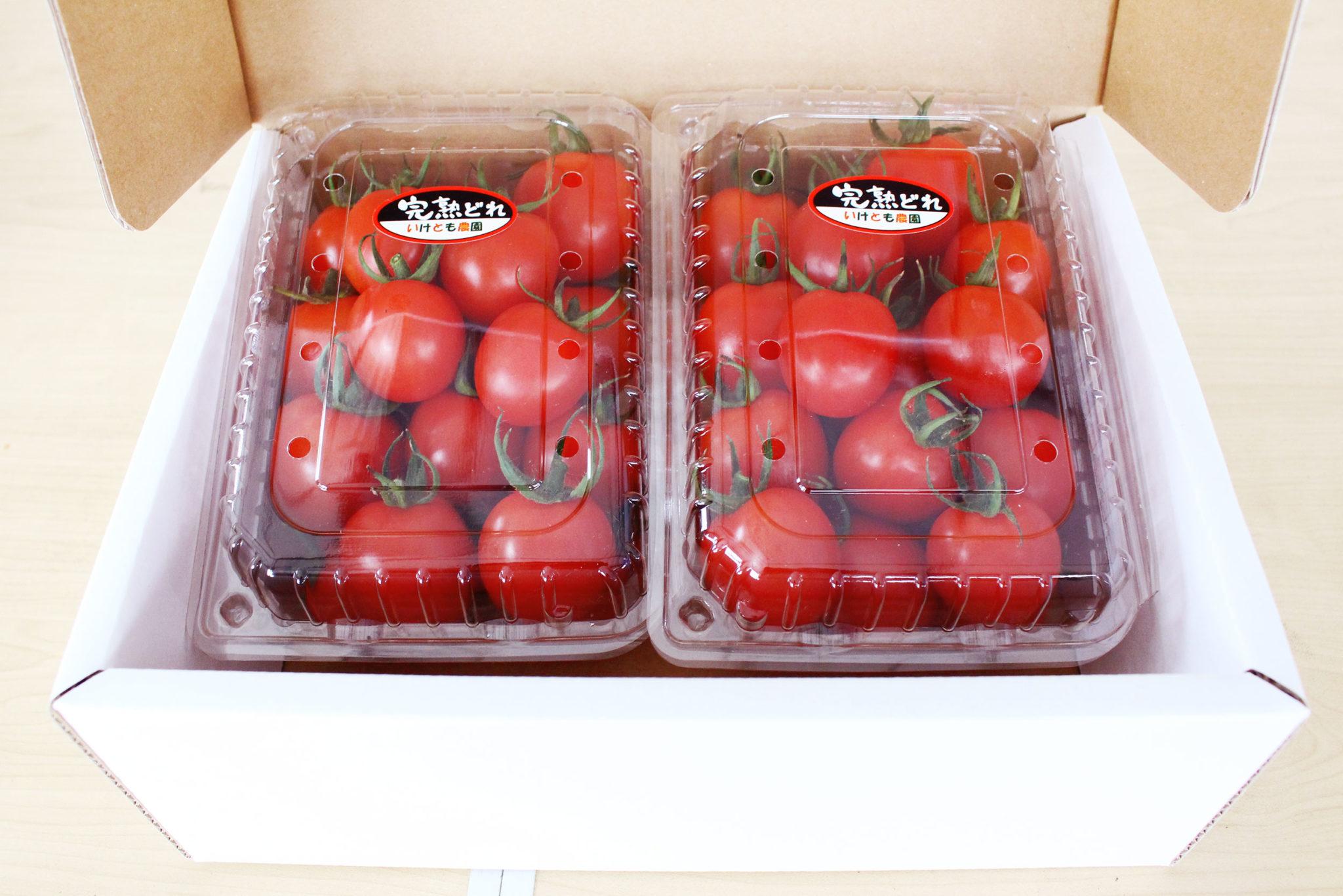 tomato07