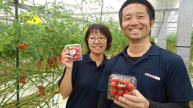 tomato02