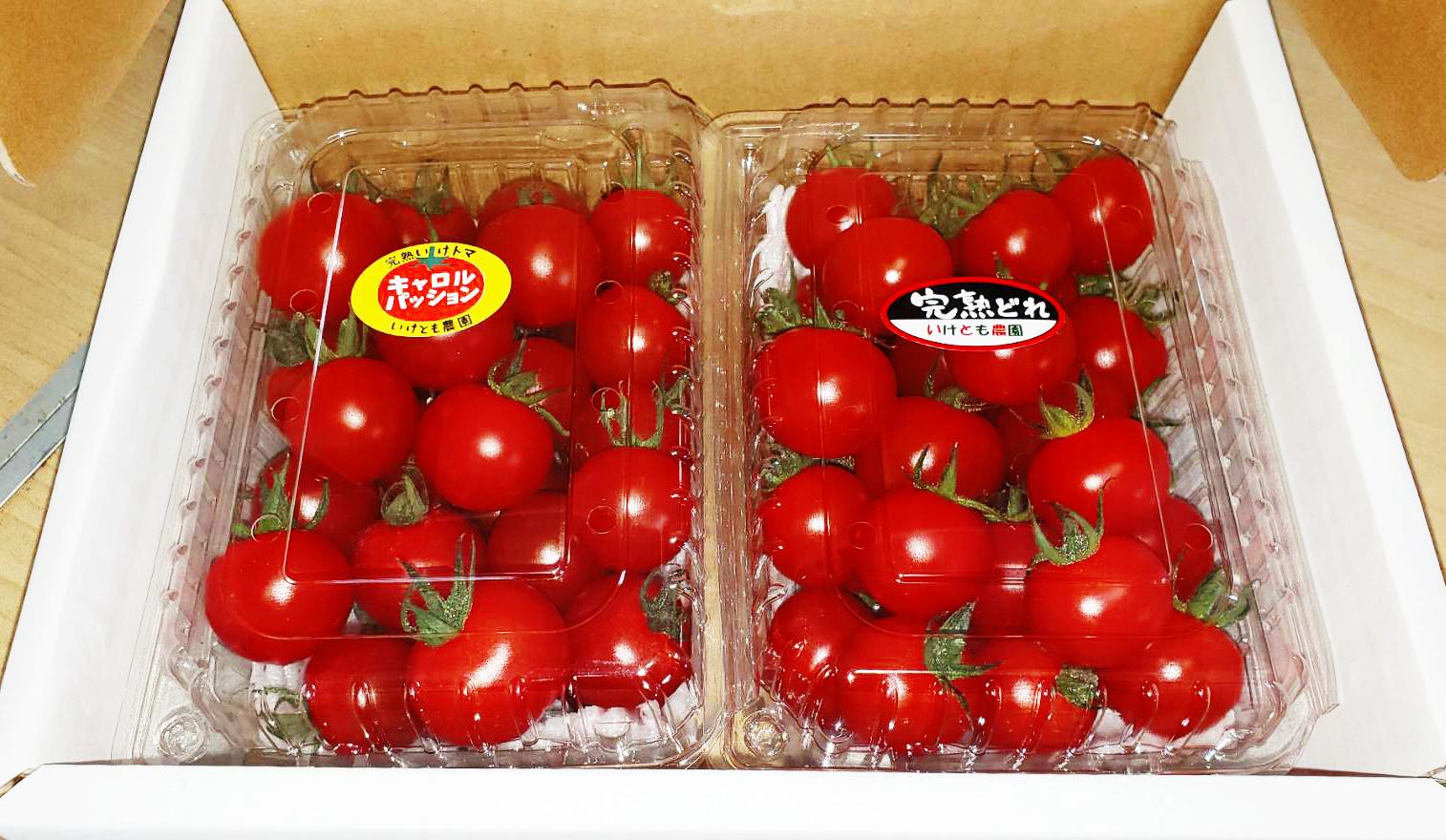tomato08